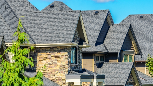 architectural high end roof shingle